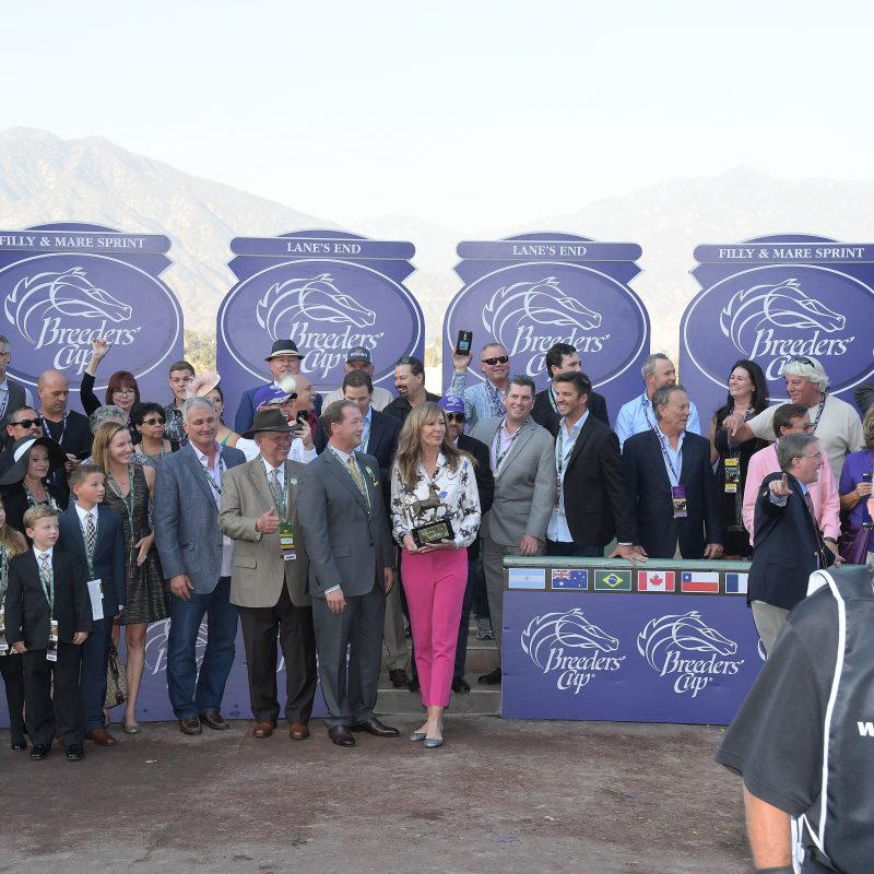 HIGHLIGHTS FROM THE 2016 BREEDERS' CUP.