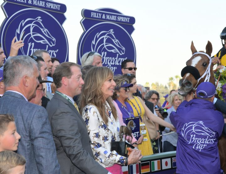 A STAR STUDDED WEEKEND AT THE RACES:THE BREEDERS CUP 2014.