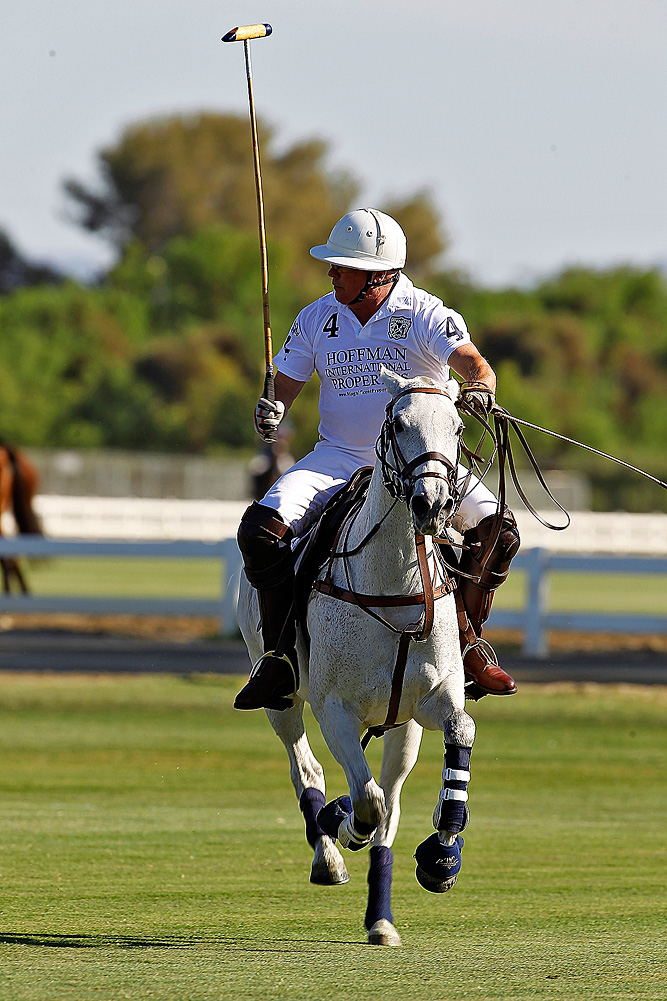 Polo Player