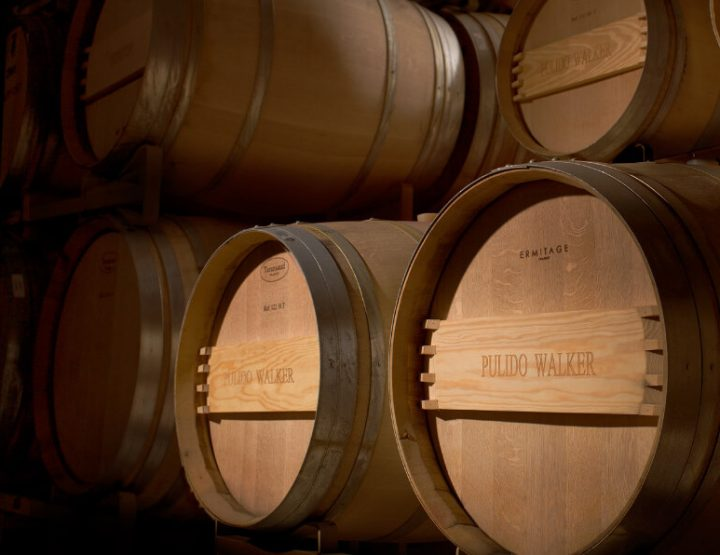 DISCOVER NAPA VALLEY AND THE MAGIC OF PULIDO~WALKER.