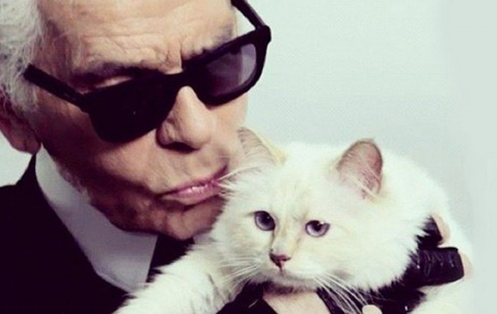 THE 10 MOST FAMOUS CELEBRITY PETS.